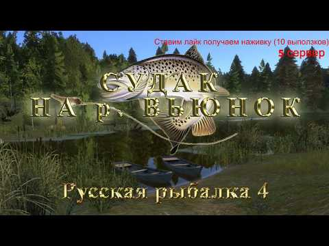 Русская рыбалка 4 Судак на р. Вьюнок