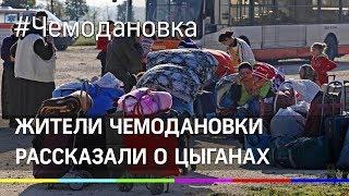 Жители Чемодановки рассказали правду о цыганах. Новые подробности