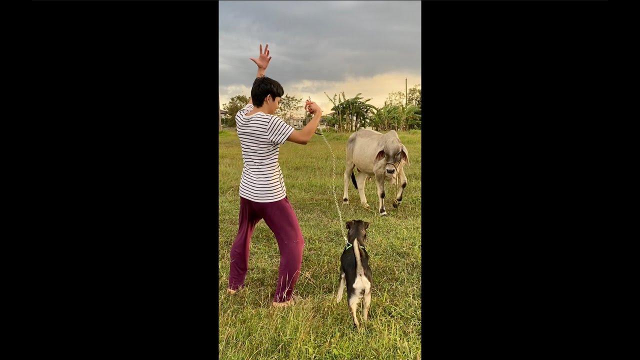 Noah Raquel - Stop Sayin' (Official Music Video)