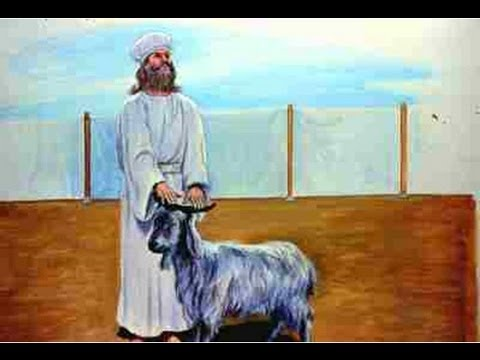 Torah Portion #24 Vayikra (Leviticus 1:1-5:26) The Offerings To Be Holy