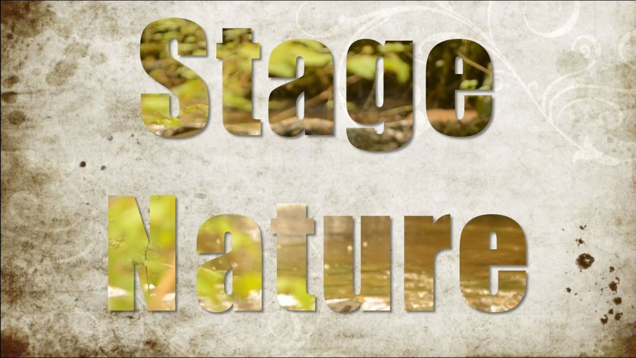 Stage Nature CKE