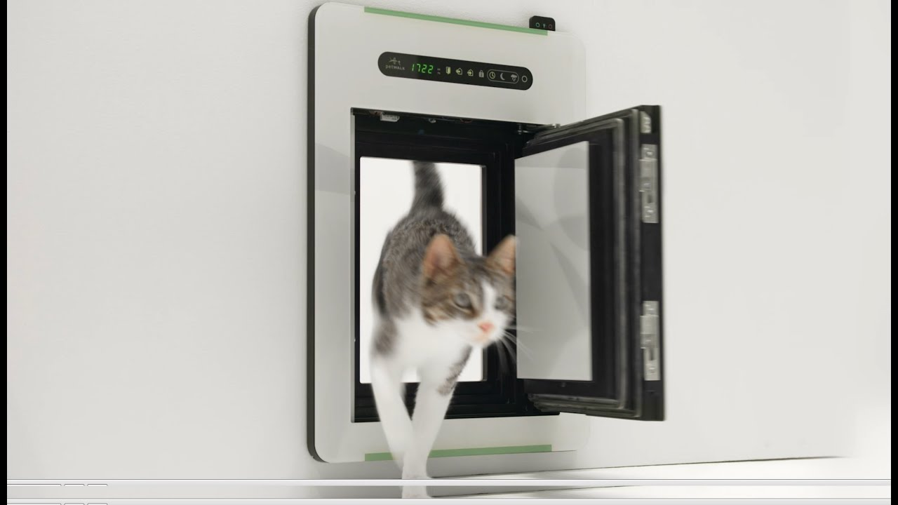 Petwalk the new freedom innovative dog doors cat doors youtube eventshaper