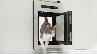 petWALK - The new freedom | Innovative dog doors & cat doors