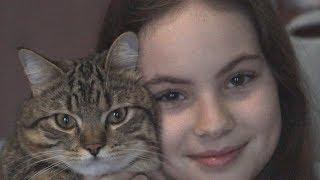 Кот Талисман хочет в Инстаграмм