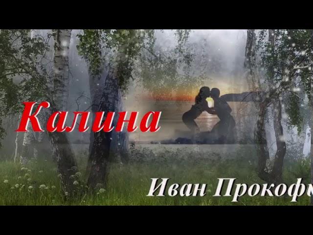 Иван Прокофьев~Калина~2019~