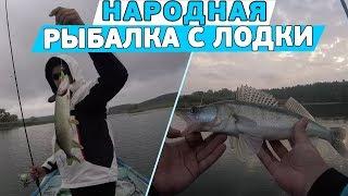 Народная рыбалка с лодки! Ловля щуки и судака осенью!