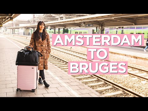 On Board the Thalys Train and Belgium's Local Train from Amsterdam to Bruges