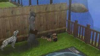 New Sims 2 Seasons Death