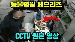 광주 동물병원 페브리즈 CCTV 원본 영상