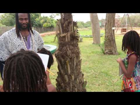 [PART 1] Abibifahodie Adesuabea Twi - 24 January 2017