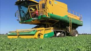 HMC How does a Pea Viner work?