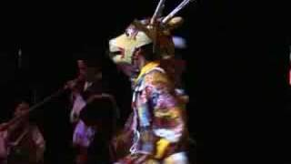 Tibetan Ritual Deer Mask Dance (Sha-Cham) in Japan