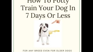 Peace Love and Dogs - Potty Train Your Dog - Peace Love and Dogs