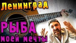 Ленинград - Рыба моей мечты (Урок под гитару)