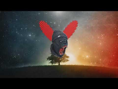 W&W X Vini Vici - Chakra (Zyranox Remix)