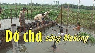 Trải nghiệm thú vị trong lần dở chà ven sông Mekong, Việt Nam