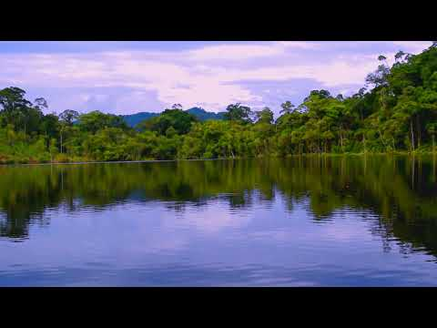 Nature Sounds, Relaxing and Calming sound of natural lake for meditation and sleep-HD1080p