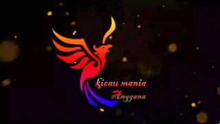 Video Suara Masteran Kacer Macet Bunyi download MP3, 3GP, MP4, WEBM, AVI, FLV Maret 2018