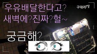 우유배달 알바 새벽 투잡(운동겸) 배달 꿀팁!