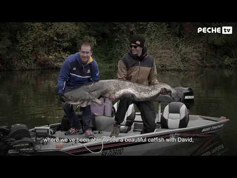Globe Fishing 47 (Saison 2) 5/6 - Pêche des carnassiers sur le Lot (Pêche TV) - Version sous-titrée
