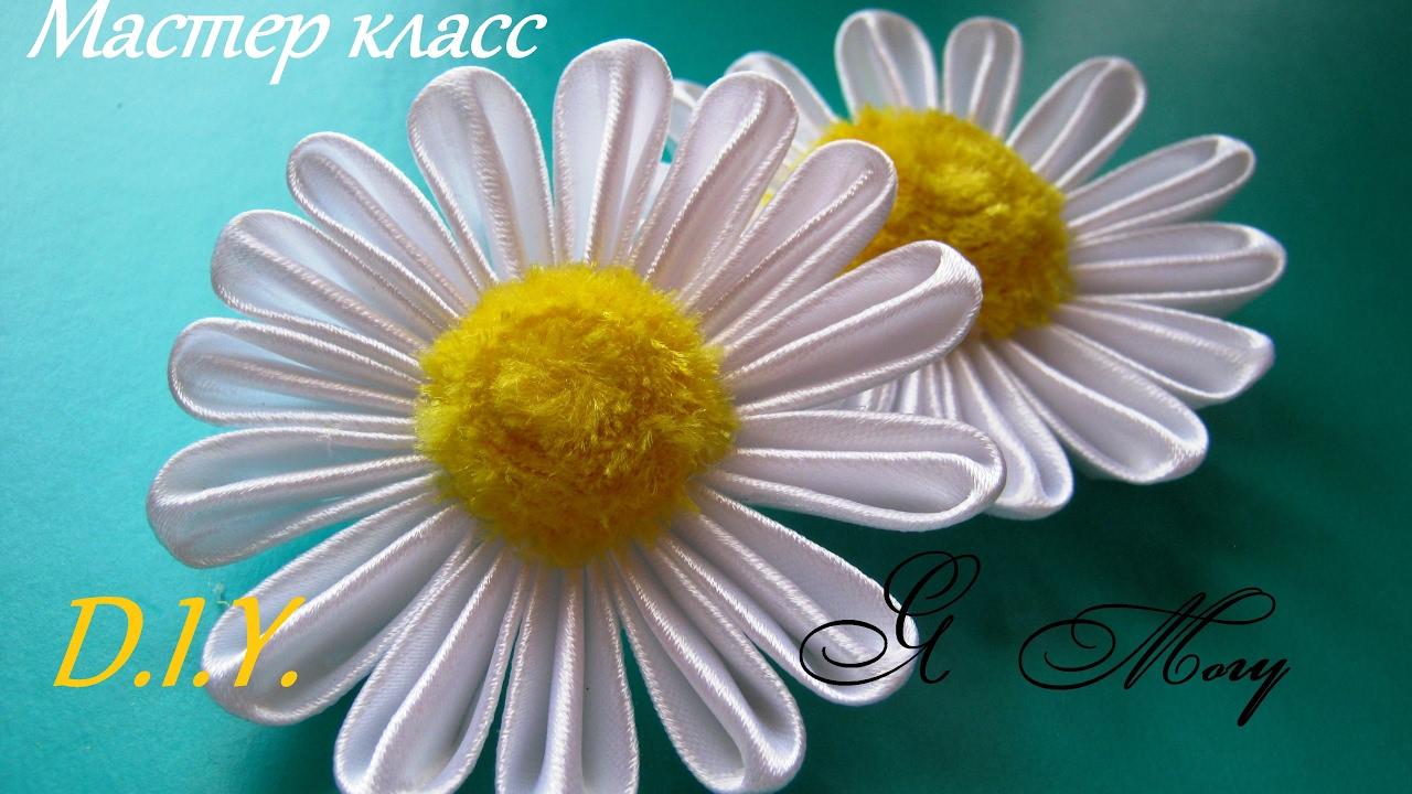 Декабрист цветок как еще называют