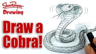 How to draw a Cobra snake  - Spoken Tutorial