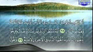 محمد عبد الوهاب الطنطاوى ما تيسر من سورة الرعد