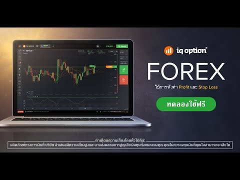 IQ Forex Trading Review