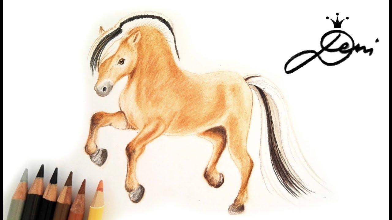 Fjord Pferd Zeichnen Lernen Fjordpferd Malen How To Draw