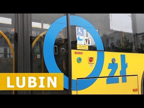 Komunikacja miejska za darmo? / Free public transport?