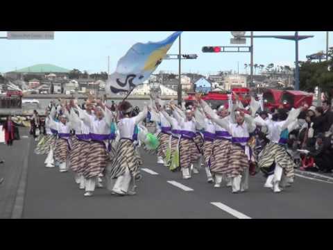 2015黒潮よさこい祭り(銚子) よさこいチーム飛翠迅