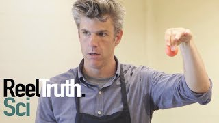 Going Deep with David Rees - How To Bounce a Ball | How To Show | ReelTruth.Science