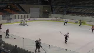 Хоккей ЛНХЛ Бриллиант-Парма 13.11.2017 г. 3 пер. Пермь
