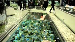 Euroshop 2011(Συμμετοχή της Frost- It Refrigeration AE στο περίπτερο της ARNEG S.p.A. στη Euroshop 2011. Η εταιρία Frost -- It Refrigeration AE συμμετείχε..., 2011-03-11T13:13:52.000Z)