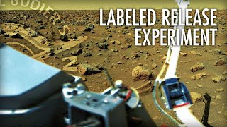 Why We May Have Already Found Life On Mars with Dr. Patricia Ann Straat