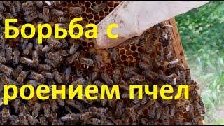 Борьба с роением пчел