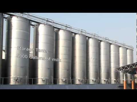 Mother Dairy.mp4