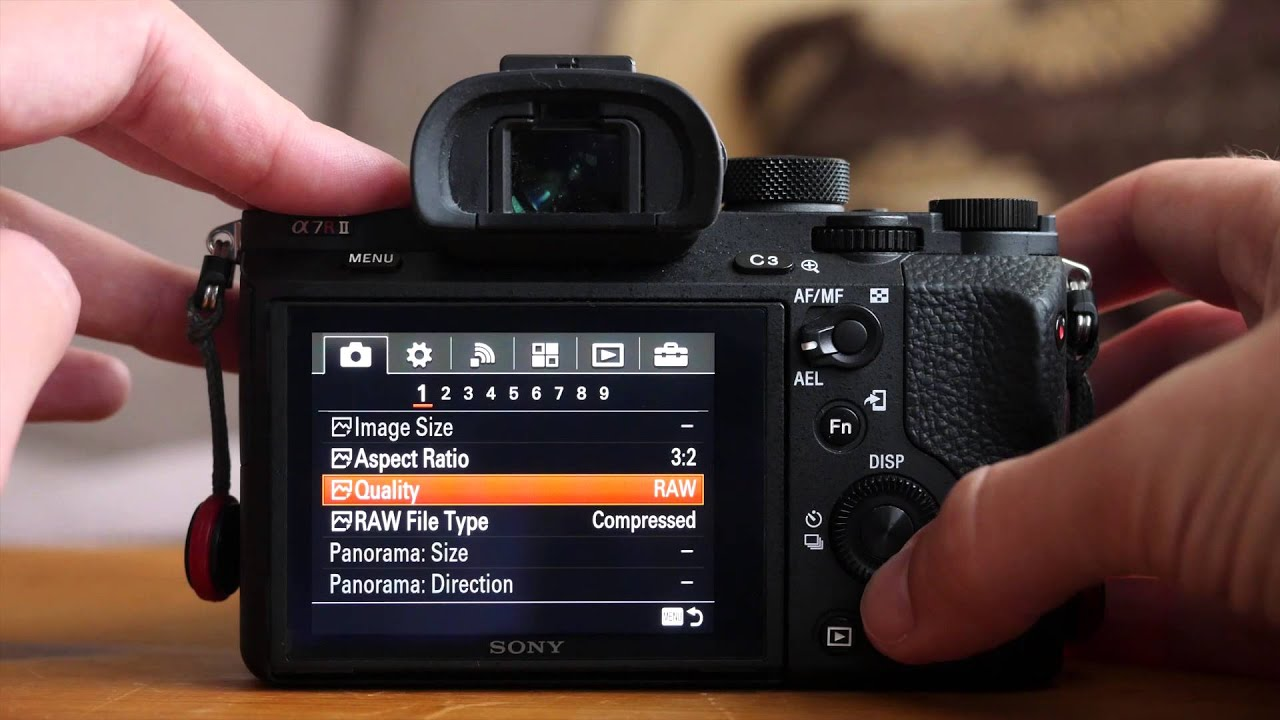 Sony A7r II - Buffer Test with compressed and uncompressed RAW