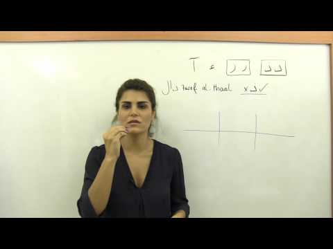 Arabic Alphabet and Pronunciation, Letters: د ذ ر ز