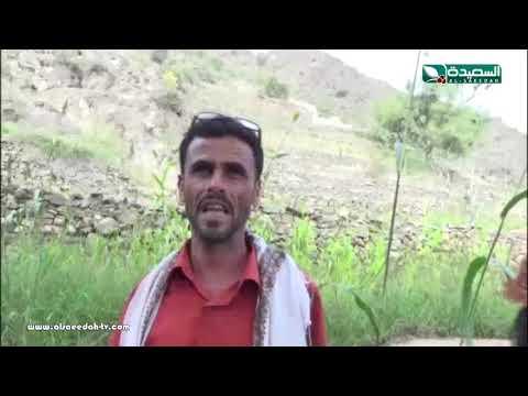 تقرير :  تراث اليمن في المدرجات الزراعية (7-12-2018)