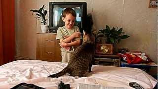 кот напал на школьника(никто сильно не пострадал., 2012-04-01T23:29:25.000Z)