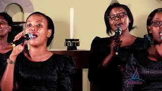 DHAMBI ZANGU - The Light Bearers