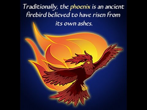 myths and legends about the spectacular phoenix bird youtube