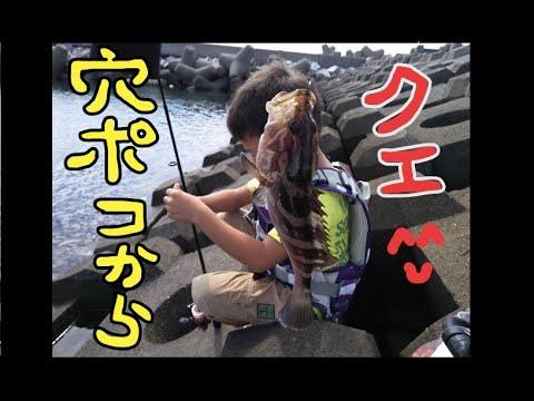 穴ポコ釣りですよ^^【銚子マリーナ付近】By tetrapot,Rock fish fishing