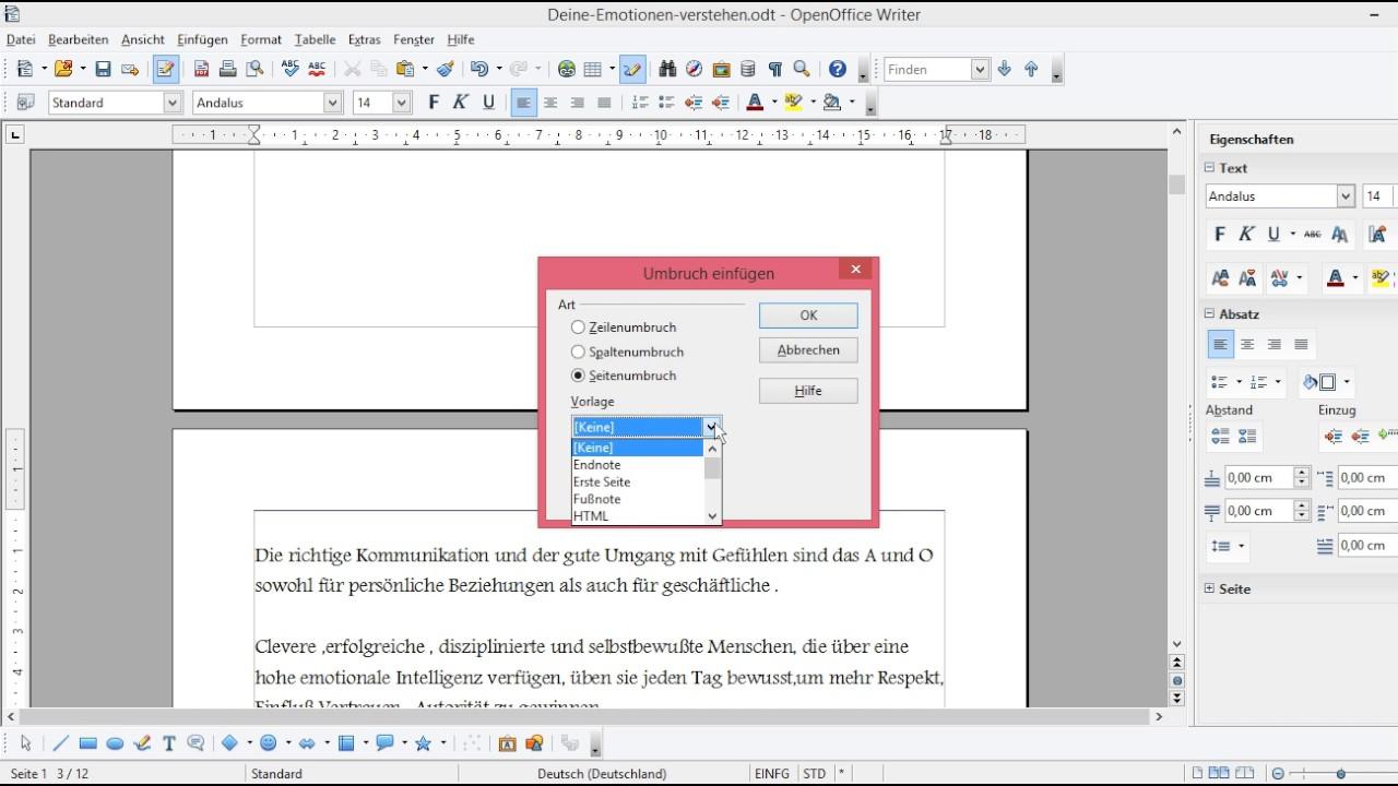 Open Office Seitennummerierung Ab Seite 3