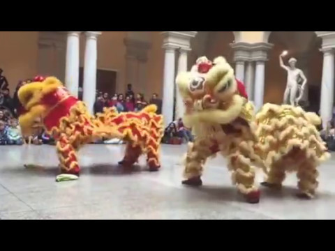 Walters Art Museum Chinese New Year Celebration 2016