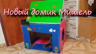Новый домик Мишель / Шотландская вислоухая кошка изучает новую игрушку