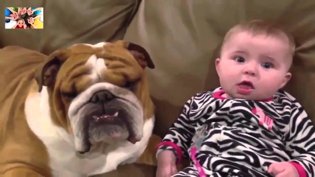 Смешные животные и дети видео смотреть онлайн до слез