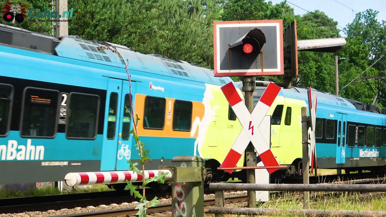 Spoorwegovergang Lingen (Ems)(D) 😍4K😍 // German railroad crossing