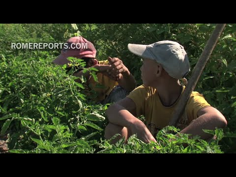 More than 168 million children are victims of forced labor